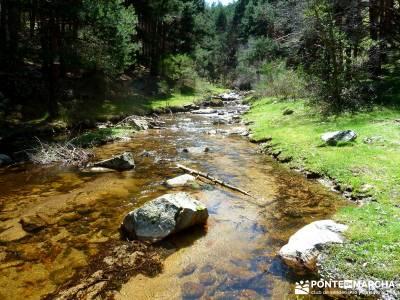 Sestil de Maillo - Cascada de Mojonavalle - Puerto de Canencia; rutas de senderismo cerca de madrid;